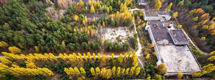 Жизнь после смерти. Как природа побеждает в Чернобыле