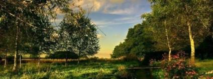 Как добыть пропитание в лесу